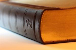 La Lofaxga y la nueva ley de contratos
